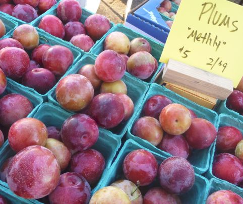 Use any variety of peaches, plums, or other stone fruit for this easy recipe. A great way to enjoy summer's produce!
