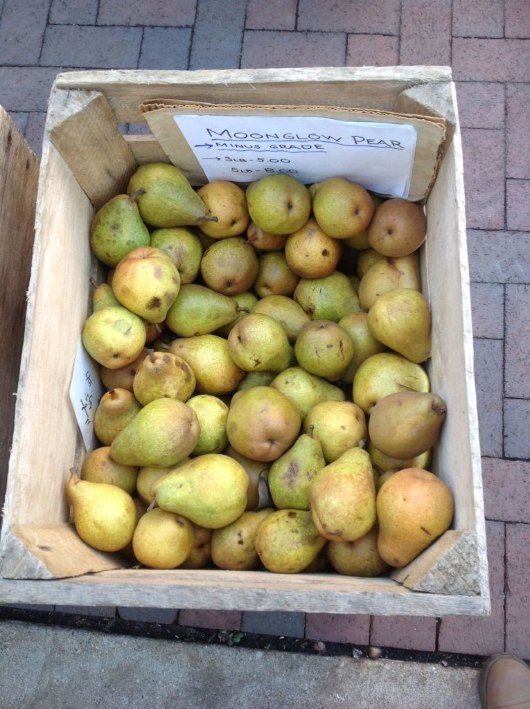 Fall pears are delicious to use in this healthy, plant-based vegan recipe