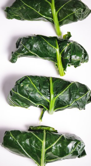 Collard Green Wraps with Raw Hemp Seed Fiesta Filling - healthy, plant-based, gluten-free, grain-free, oil-free, vegan recipe (6)