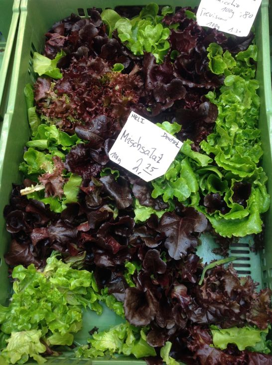 Organic Red and Green Leaf Lettuce from the Farmers Market