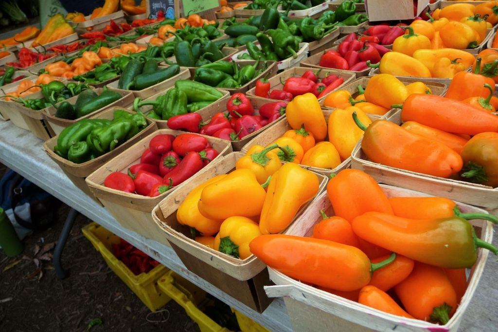 A Rainbow of Organic Peppers at Chicago's Green City Farmer's Market