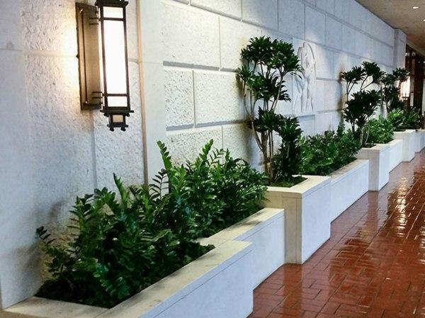 trends in indoor landscping
