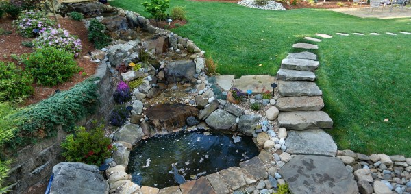 eco-friendly landscapes water