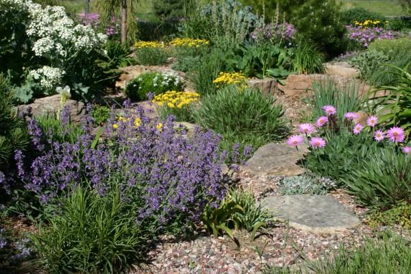 stimulate landscape with plant