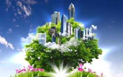 Sylvapolitan Rising: The Ways of Deep Herbalism, w/ Morgan Brent