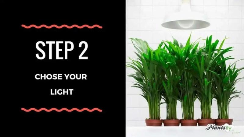 Plants Grow Light