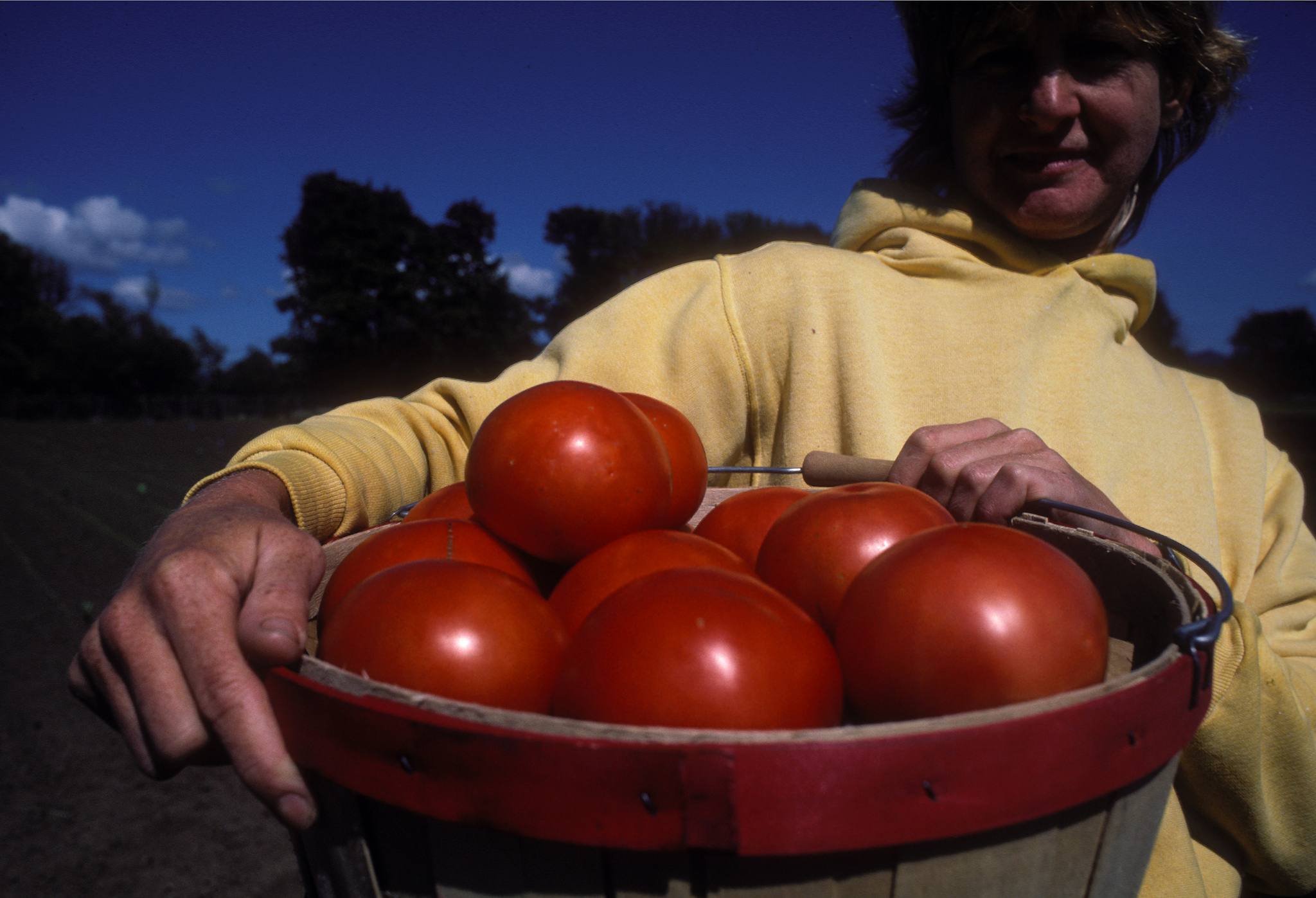 Be safe: Develop good habits from garden to table