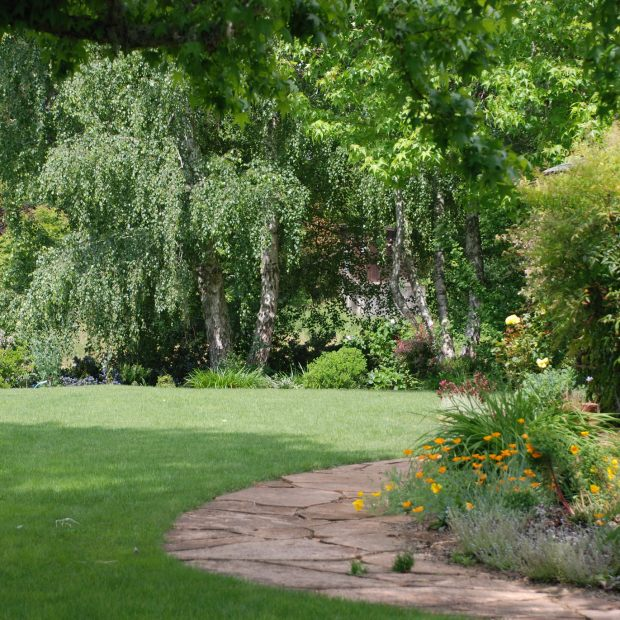 As Labor Day creeps up, think about spiffing up lawn