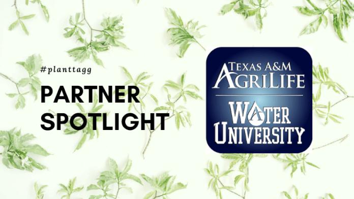 PlantTAGG partner spotlight - AgriLife Water University