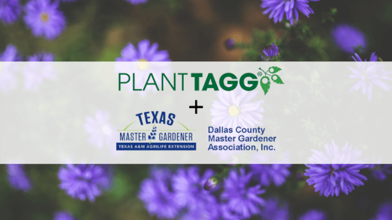 dallas county master gardener and planttagg
