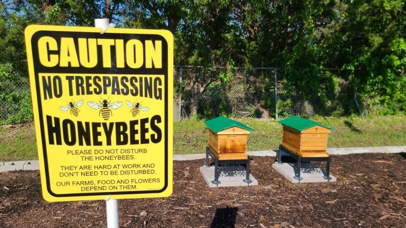 PlantTAGG & RB1 Honey Bee Apiary