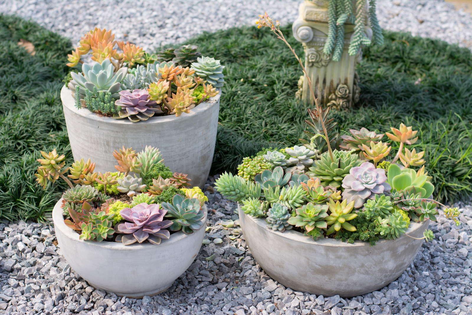 Deko Baum Garten Gartendeko Selbst Gemacht Gartendeko Aus Beton Selbst