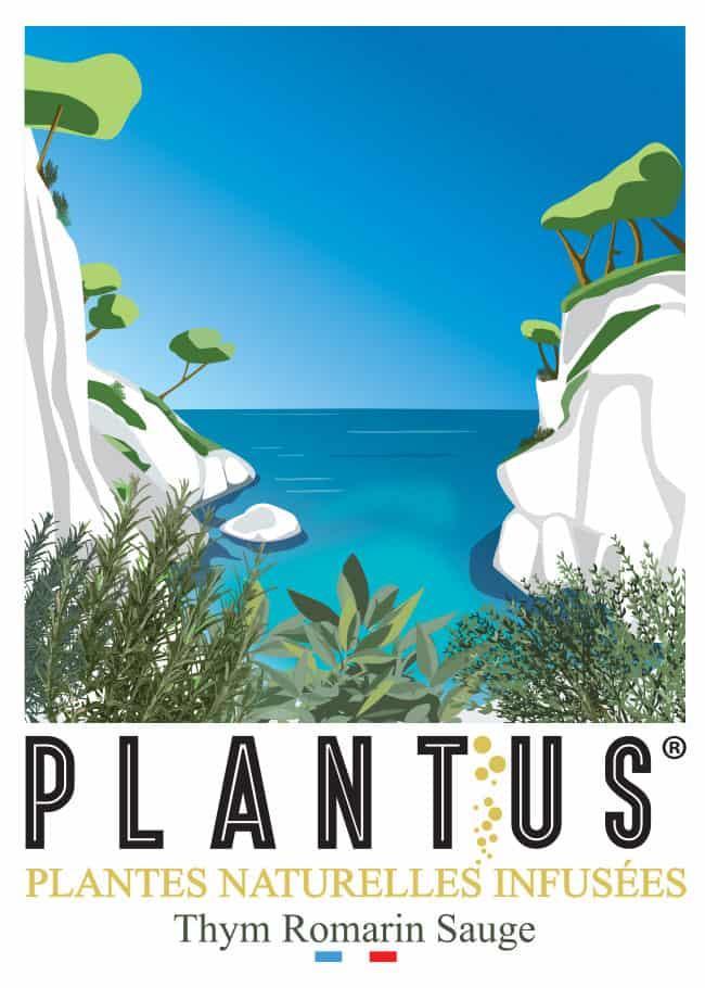Illustration de PLANTUS Calanque Thym Romarin Sauge.