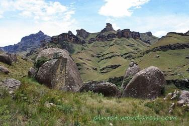 sudafrica14