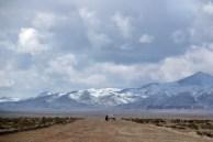 mongoliafotog7