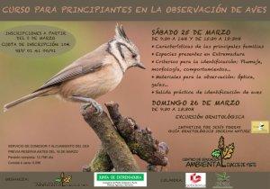 curso-ornitologia-aves