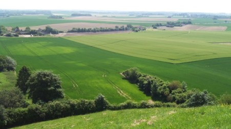 view of waterloo from the top of hameau du lion