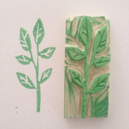 Desde que encontre la tecnica de hacer sellos presto mas atencion a las hojas y flores en el jardin