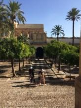 Entrada a la Mezquita Catedral