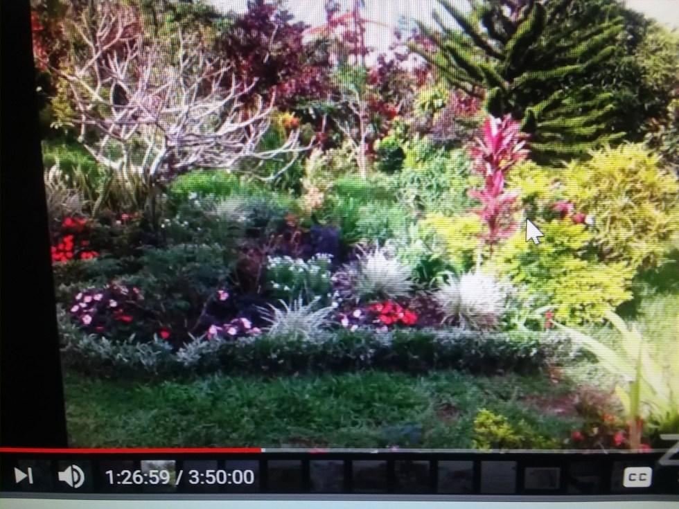 Salas garden large view