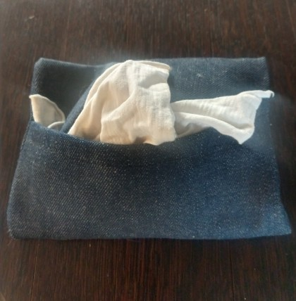 Reusable cloth tissue holder