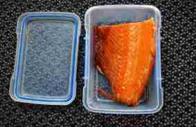 salmon featured