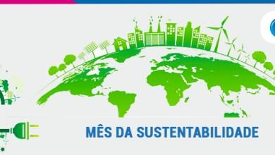 Foto de Sustentabilidade: você pratica na sua empresa?