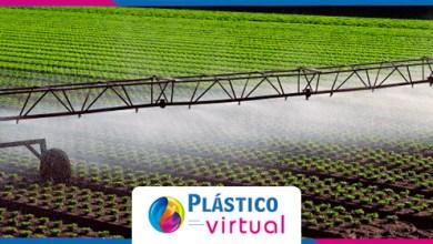 Photo of A importância hídrica no agronegócio para aumento de produtividade