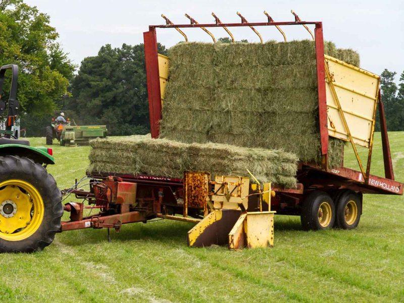 Сельскохозяйственная промышленность