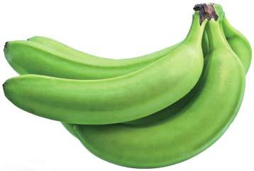 Mayorista de frutas y verduras