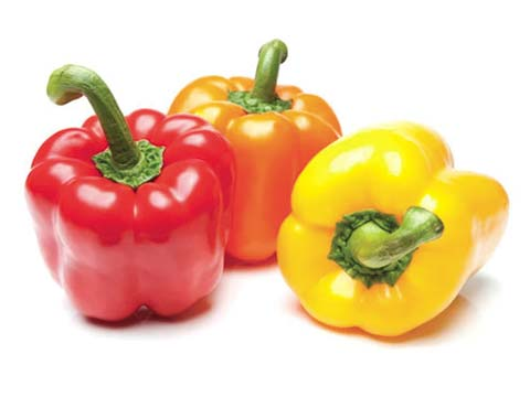 GPL - Verduras Pimiento