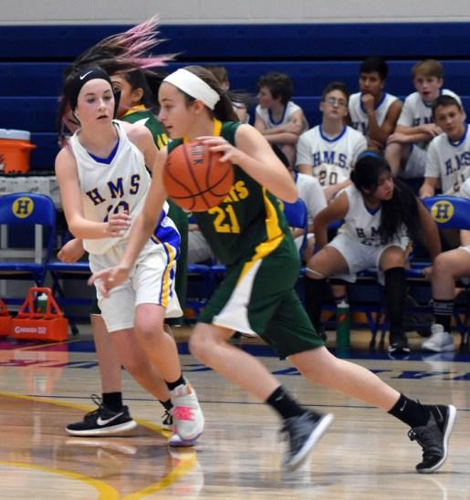Highlands.Blue.Ridge.basketball.MS (16)