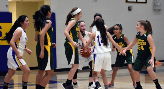 Highlands.Blue.Ridge.basketball.MS (21)