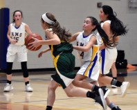 Highlands.Blue.Ridge.basketball.MS (27)