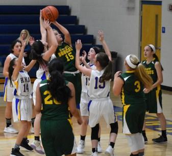 Highlands.Blue.Ridge.basketball.MS (50)