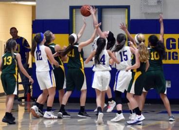 Highlands.Blue.Ridge.basketball.MS (62)