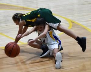 Highlands.Blue.Ridge.basketball.MS (74)