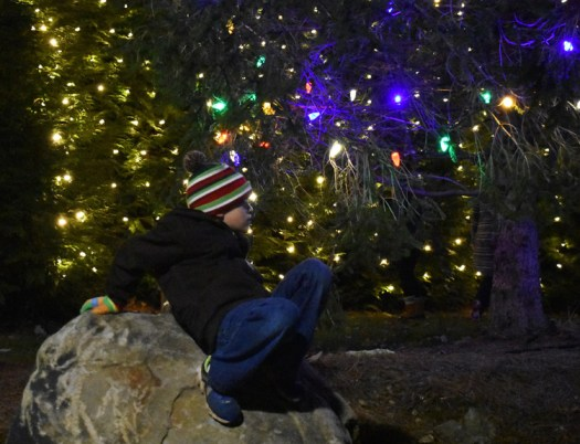 Highlands.Christmas.Tree.Lighting (44)