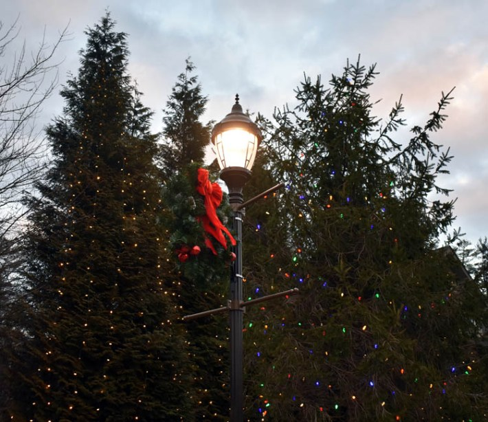 Christmas.Highlands (2)