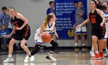 Highlands.Rosman.basketball.V (18)