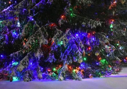Snow.Highlands.12.9 (29)