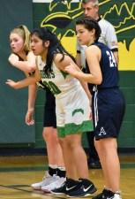 Blue.Ridge.Asheville.basketball.V.girls (1)