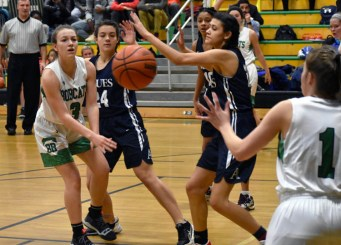 Blue.Ridge.Asheville.basketball.V.girls (4)
