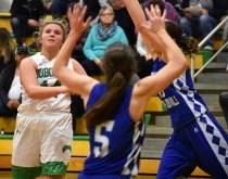 Blue.Ridge.Brevard.basketball.V.girls (1)