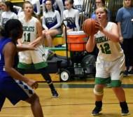 Blue.Ridge.Brevard.basketball.V.girls (19)