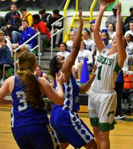 Blue.Ridge.Brevard.basketball.V.girls (20)