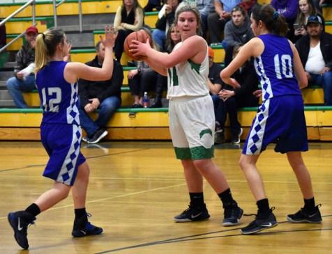 Blue.Ridge.Brevard.basketball.V.girls (32)