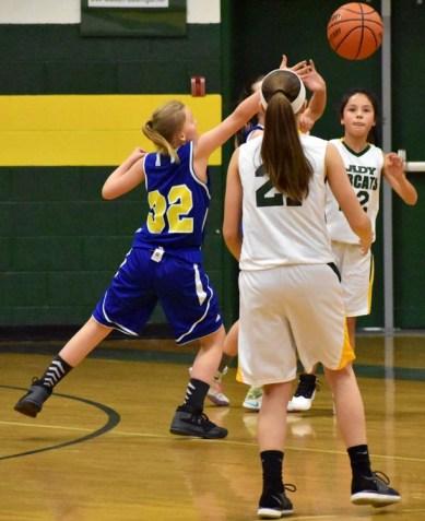 Blue.Ridge.Highlands.basketball.MS (24)