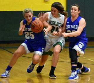 Blue.Ridge.Hiwassee.basketball.V.girls (24)