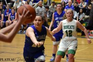 Blue.Ridge.Hiwassee.basketball.V.girls.LSMC (17)